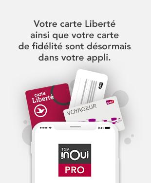 Carte Fidelite Sncf.Carte Egaree Voyageur