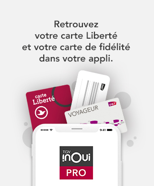 Carte Grand Voyageur.Carte Egaree Voyageur